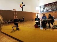 Landesmeisterschaften im Geräteturnen - Schuljahr 2016/2017